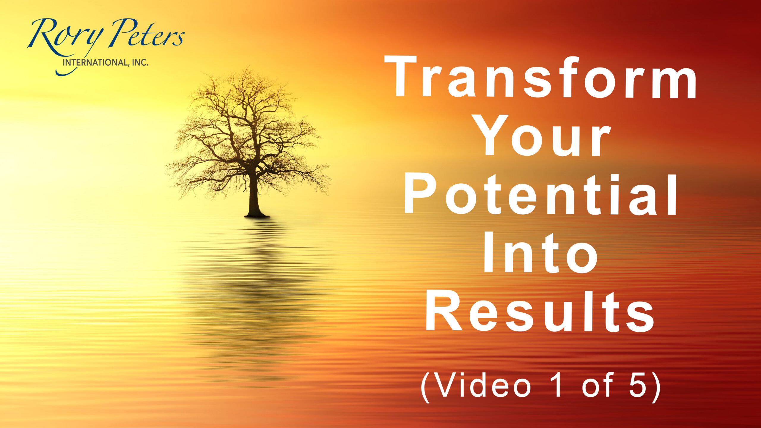 Transform Your Potential Into Results (1 of 5)Transform Your Potential Into Results (1 of 5)